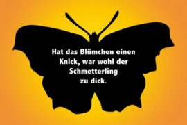 Schmetterling & Blumen